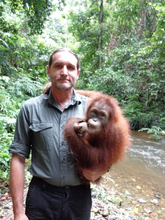 Orangutans have rights and they deserve