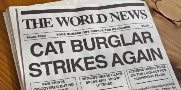 'Cat Burglar Newspaper Headline. Newspaper, copy and creative all created by the