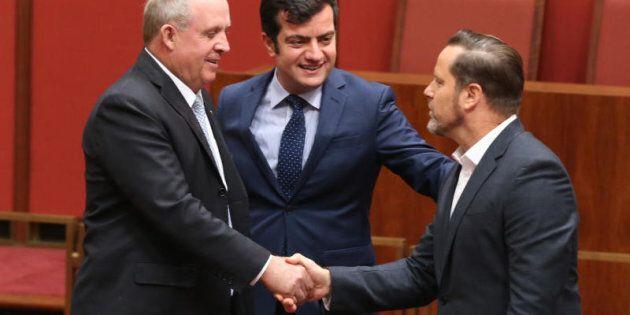 Greens Senator Peter Whish-Wilson is congratulated by Nationals Senator John 'Wacka' Williams and ALP Senator Sam Dastyari