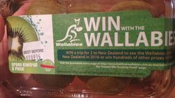 Treasonous Kiwi Fruit Supports The Wallabies, Betrays Its