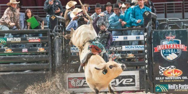 Bull rider Bradie Gray has been severely injured at a U.S.