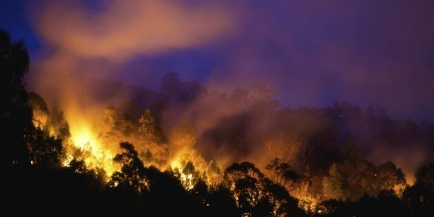 Bushfire near Newcastle,