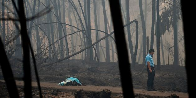 The fires occurred in the Pedrógão Grande area, about 150 kilometres northeast of Lisbon.