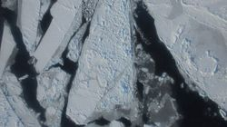 Arctic Sea Ice Levels Are Lower Than They've Ever Been.