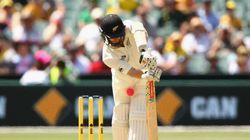 The Fuchsia Of Cricket