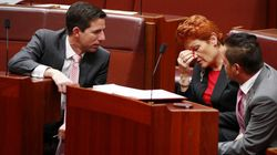 Words For Pauline Hanson From A Disabled Child's Parent, 'Our Hearts Break On A Regular