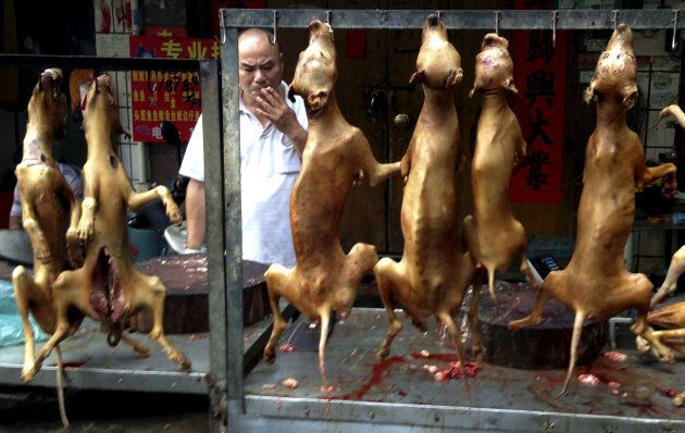 During the Yulin festival dead dogs can be seen hanging from hooks along the city's