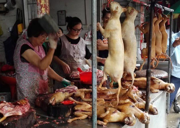 The Yulin dog meat festival started in 2010 as a way to boost the sale of dog