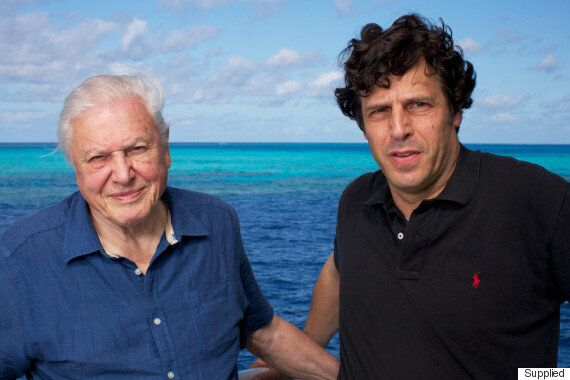 Bunk Beds With David Attenborough And Other Tales From Anthony Geffen While Filming 'The Great Barrier