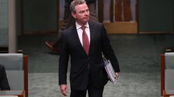 Pyne Toes Party Line After Expressing Hopes For Same-Sex