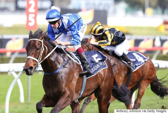 Winx Runs In The Doncaster Handicap At Randwick Today. It's Time You Got To Know Our Best Racehorse Since...