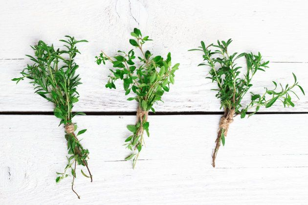 Try other herbs in your cooking as a substitute for salt.