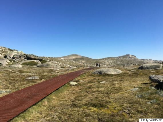 A Slob's Guide To Climbing Mt Kosciuszko, Australia's Highest