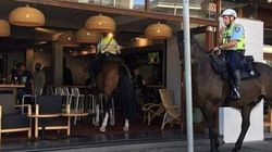 Neigh-bourly Police Horse Rides Into A Local Bar. No,