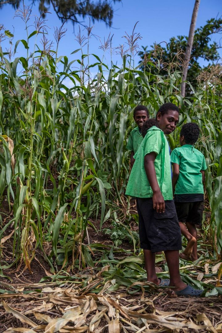 Students guiding through their garden, where they use composted toilet waste to enhance their crops. They have seen an increase in production since fertilising. This type of gardening was also introduced through an NGO and is not found in traditional methods.