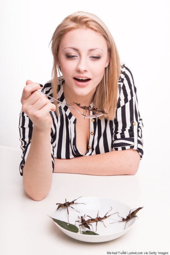Have You Tried Eating Crickets? You Might Want To After Reading