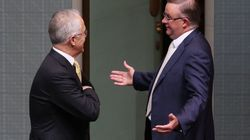 Coalition Chaos: What The Hell Happened In Parliament Last