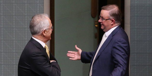 Labor's Anthony Albanese stares down Prime Minister Malcolm Turnbull on Thursday night.