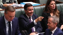 Mark Butler Points The Finger At The Liberal Party's Climate