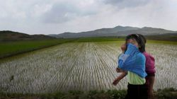 Thousands Of North Korean Children Thought To Be Malnourished After
