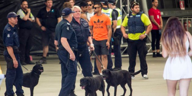 There are growing calls to dump the sniffer dog program and institute pill testing
