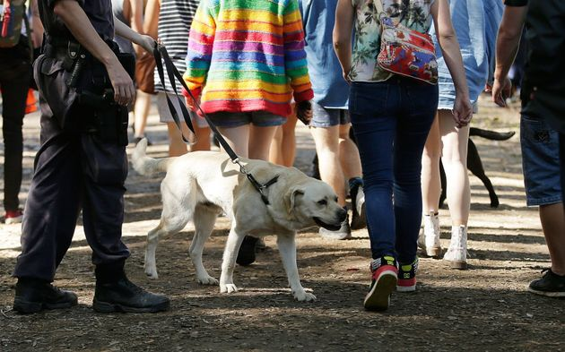 Police officers and drug detection dogs walk amongst festival goers at Splendour in the