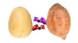 Spud Wars: Is Potato Or Sweet Potato