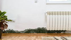 How To Get Rid Of Mould In Your