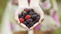 Berries, Chilli Powder And Avo Plus Other Foods For Glowy Skin This