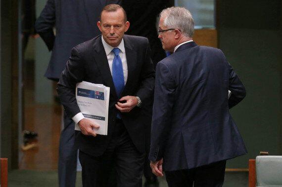 Religious Revolution, Tony Abbott Says Islam Must