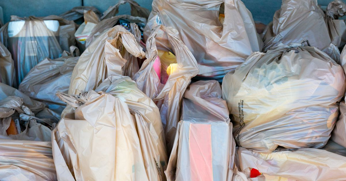 9956262698 Woolworths And Coles Will Ban Single-Use Plastic Bags From Next Year ...