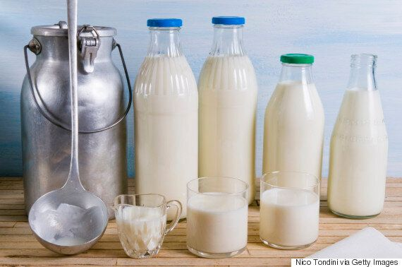 Different Types of Milk: Which One Is The