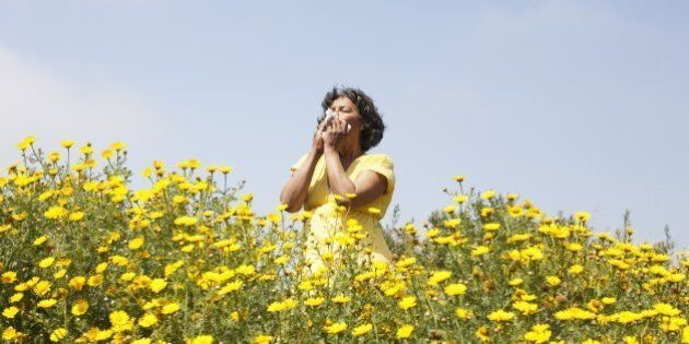 Mixed race woman in field of flowers enjoying
