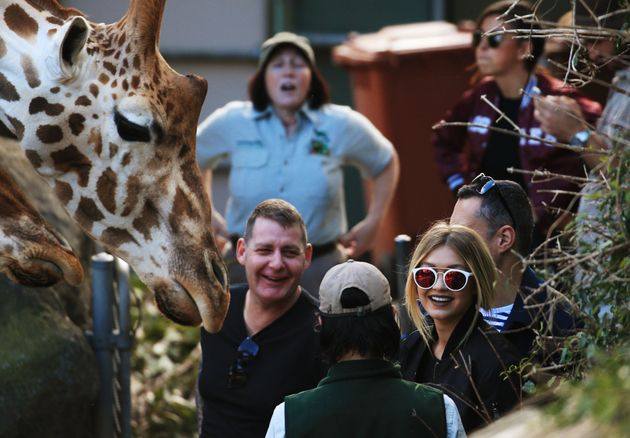To Celebrate Its Centenary, Taronga Zoo Will Give $1 Entry To People On Their Birthday For