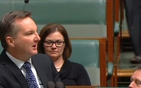 Chris Bowen Casts Tony Abbott As The Bachelor, Turns Parliament Into Open Mic