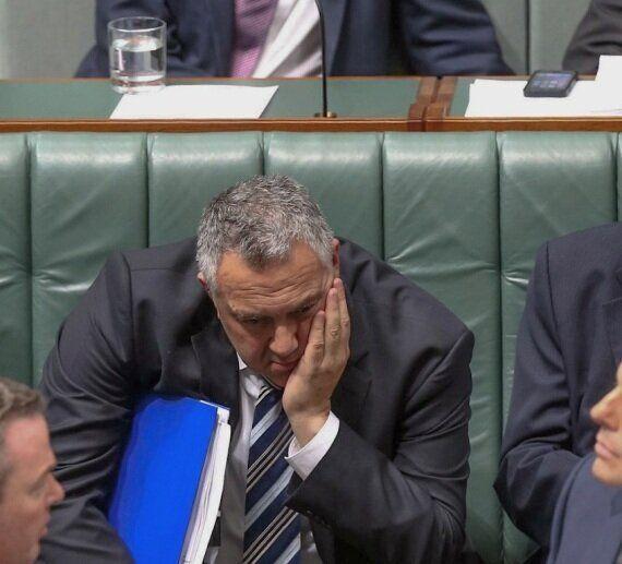 Chris Bowen Casts Tony Abbott As The Bachelor, Turns Parliament Into Open Mic