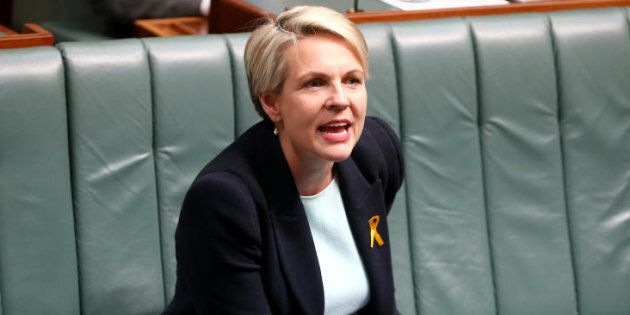 Deputy Opposition Leader Tanya Plibersek says the plebiscite will be expensive, non-binding and