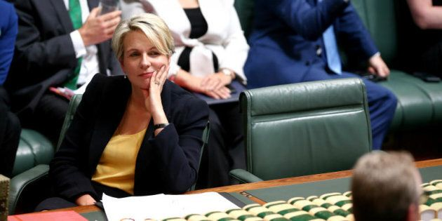 Ms Plibersek says Cory Bernardi is