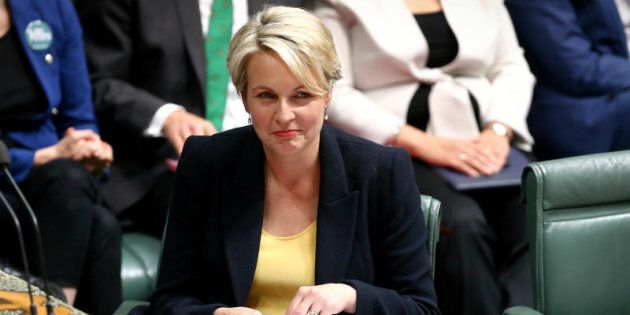 Tanya Plibersek says she would be
