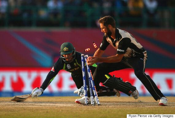 World T20: New Zealand Beats Australia by 8 Runs So You Might as Well Stay In