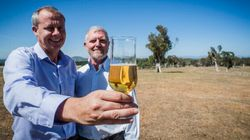 Australia Comes To World's Rescue In Helping Create A Beer Everyone Can