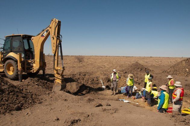The 2015 Austrosaurus dig site being