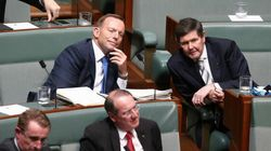 The Ex-Ministers' Club: Malcolm Turnbull's Backbench