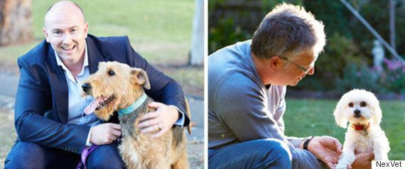 Ageing Pets To Live Pain-Free Thanks To Incredible New Vet