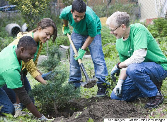 Community Gardens: The Great Benefits Of Joining