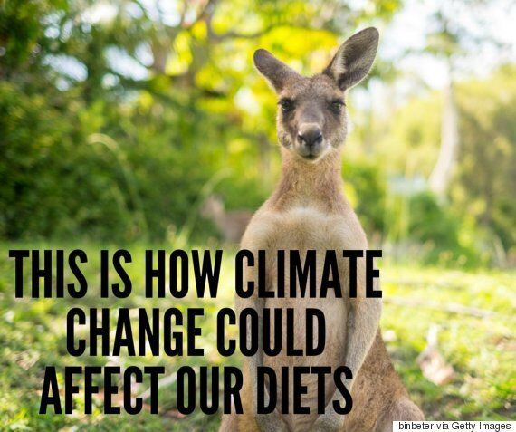 Climate Change Could Change Your Diet Over The Next 30