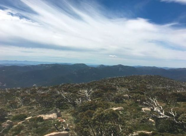 This Is How To Climb The Highest Peak In Each Australian State -- Really