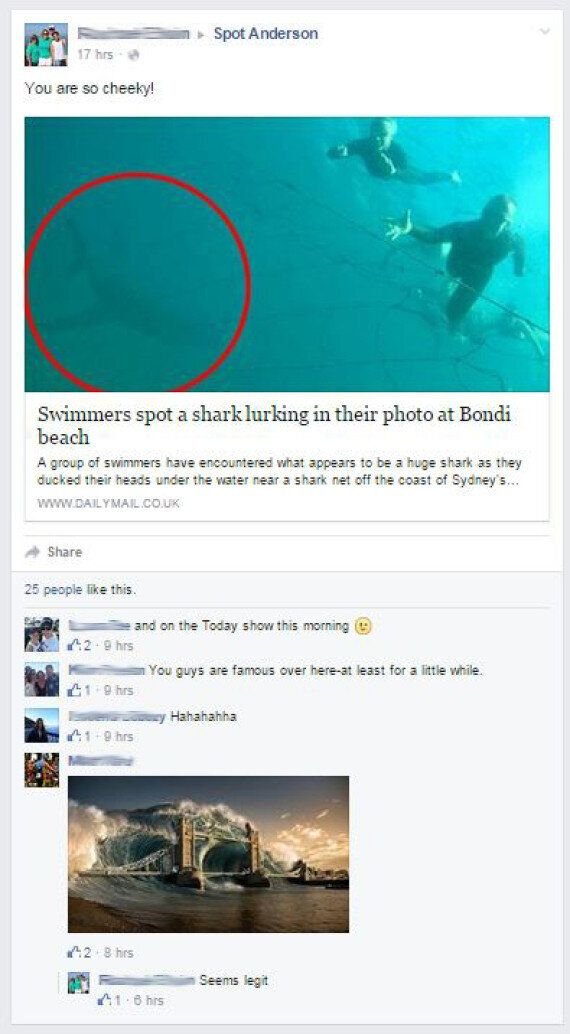 Should Bondi Beach Be On Shark Watch, Or Hoax