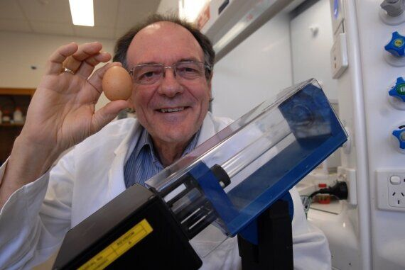 Australian Scientists Use 'Uncooking Egg' Device To Improve Essential