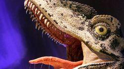 Three Model Raptors Beheaded At National Dinosaur